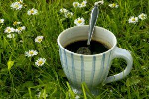 En kopp kaffe i gresset. Hage. Plen. Gress. Grønt. Grønn. Sommer. Blomster. Fritid. Ferie. Sommerferie. Slappe av. Varmt. Drikk. Drikke. Symbol. Idé.
